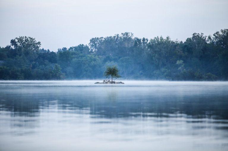 solitude, fog, lake