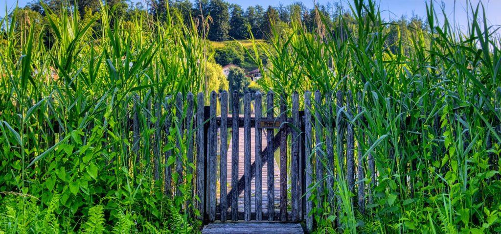 garden fence, wood fence, wooden door-5346252.jpg